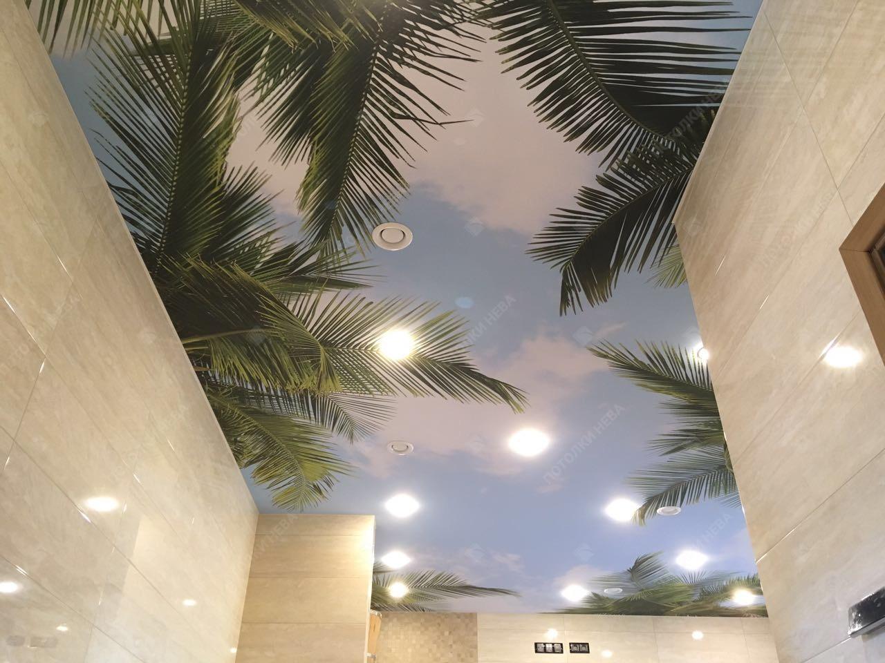 Потолок с фотопечатью тропиков и пальм