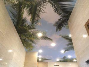 Швейцарский тканевый потолок с фотопечатью тропиков и пальм